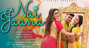 Tulsi Kumar – Nai Jaana Lyrics