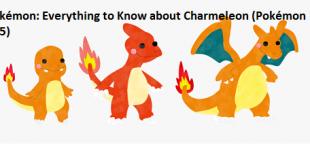 Pokémon: Everything to Know about Charmeleon (Pokémon 005)