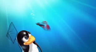 How to Switch from Windows 7 to Linux Operating System