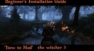 Best PC Mods for Beginners in Witcher 3
