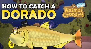How to Catch Golden Dorado in Animal Crossing: New Horizons – Setup Era